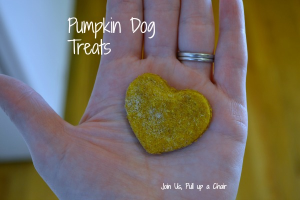 Pumpkin Dog Treats | Join Us, Pull up a Chair