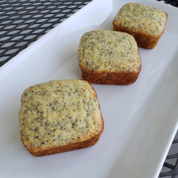 Lemon Poppy Seed Squares | Join Us, Pull up a Chair